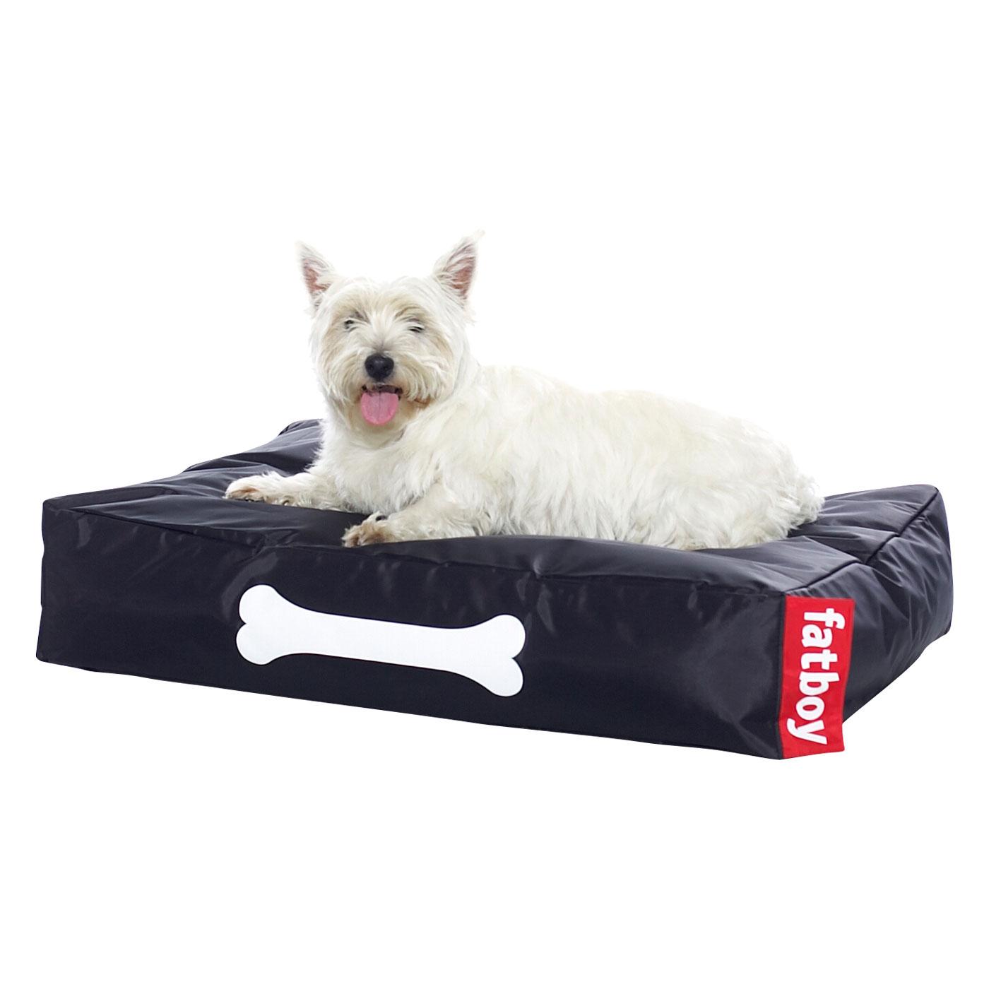 katalog ledsagare doggy stil