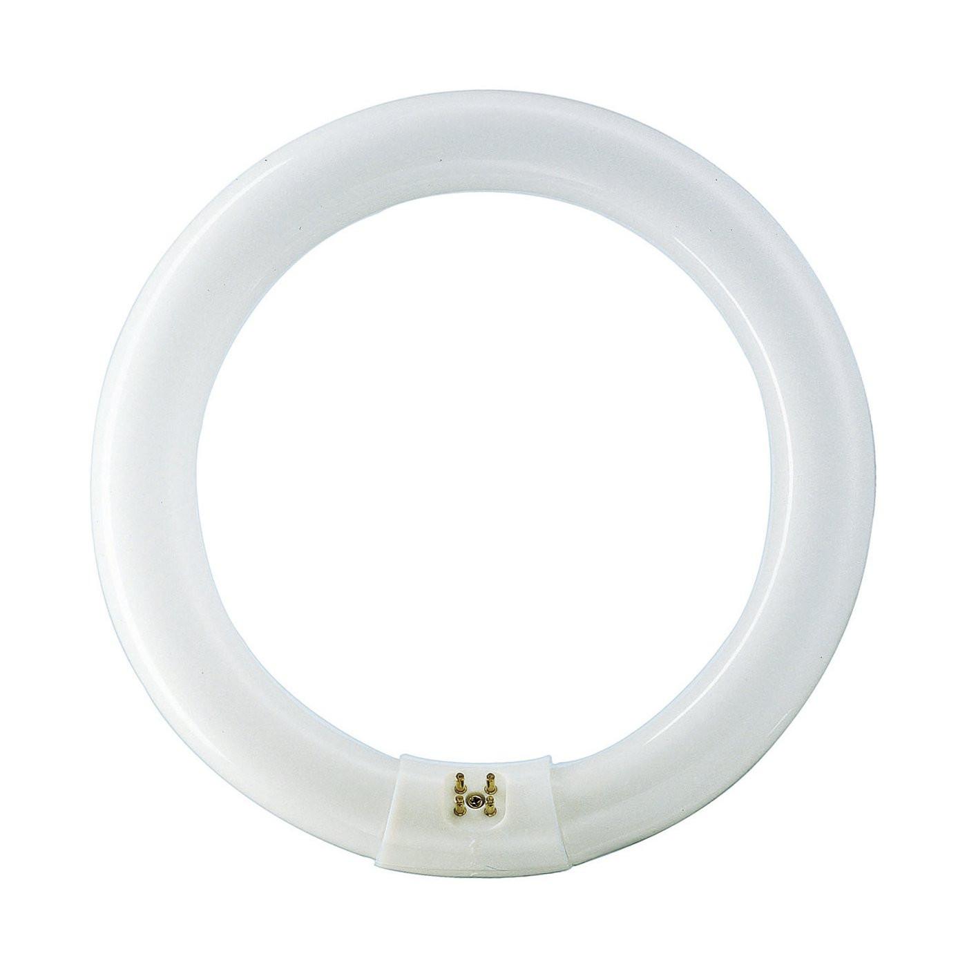 Philips tube fluorescent circulaire T29-R 40W/830 G10q blanc chaud