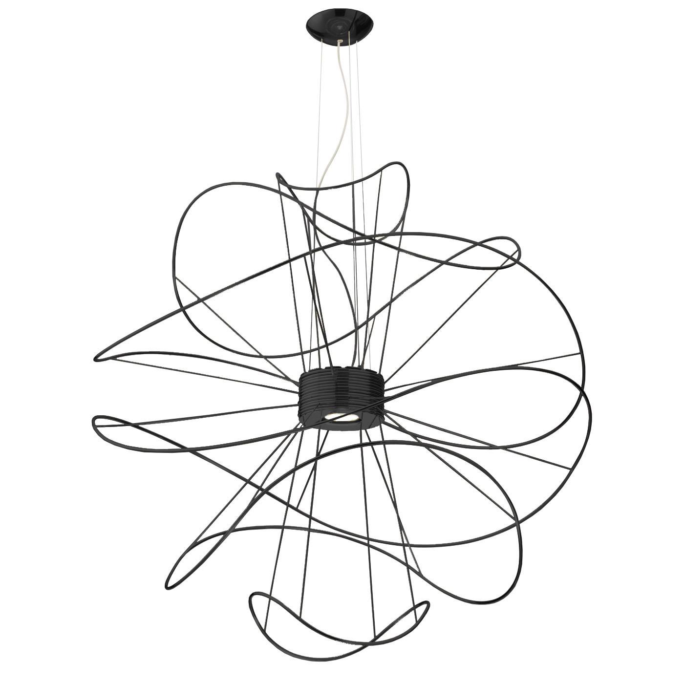 Axo Light Hoops SP6