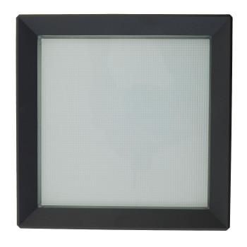 Bega 24397K3 LED Wand-Deckenleuchte mit Bewegungsmelder, grafit, 3000K (neutralweißes Licht)