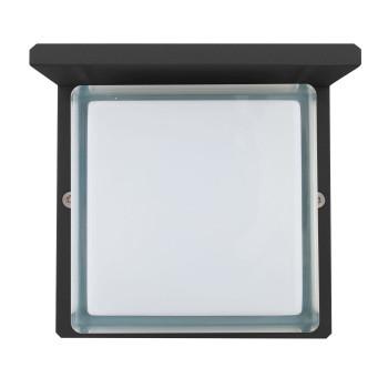 Bega 33328 LED große Wandleuchte, grafit, 3000K (neutralweißes Licht)