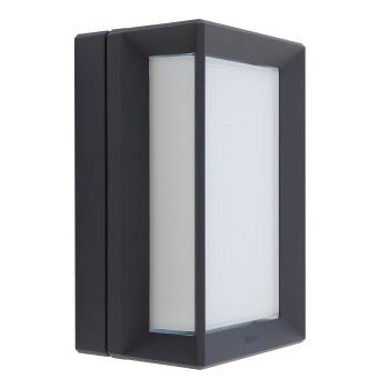 Bega 22750 LED Wand-/Deckenleuchte, grafit, 4000K