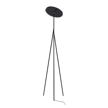 Anta Faro, schwarz, Höhe 186 cm, 3000K