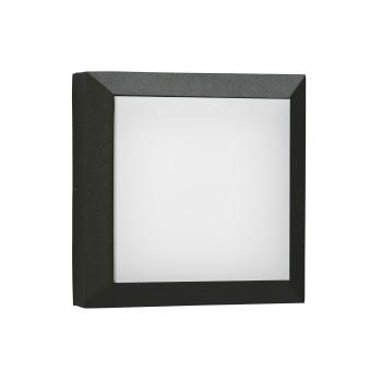 Albert 6560 Wand-/Deckenleuchte, schwarz (Albert 666560)